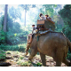 Elephant Riding 1 Hour
