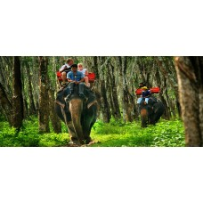 Elephant Trekking Package 2